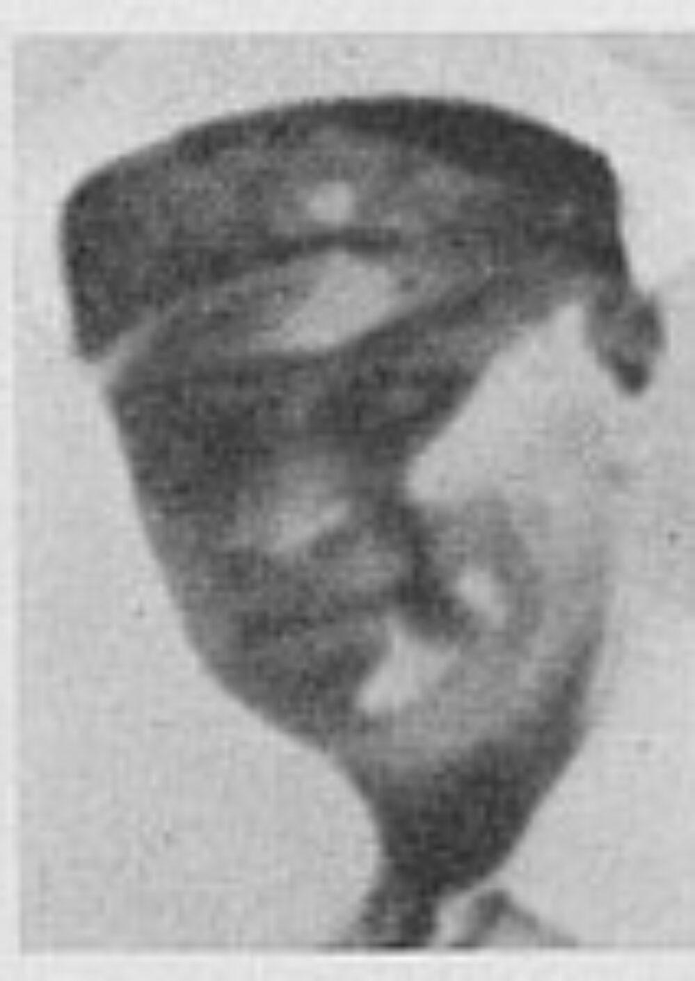 Johan Arnt Dahl