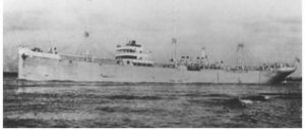 MS Knute Nelson